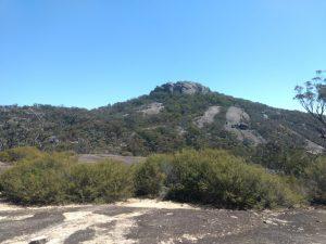 Mt Norman