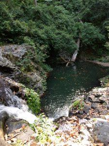 Waterhole in Goomburra National park