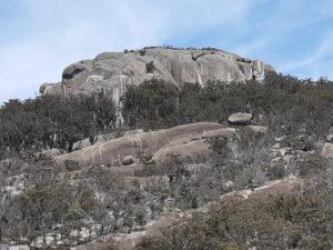 MTB at Girraween, Mt Norman